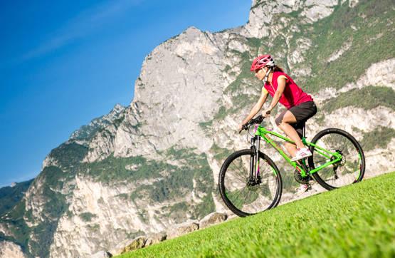 superior fahrrad mtb damen